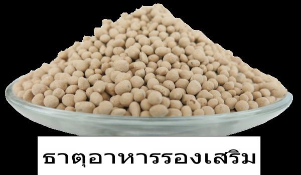 ธาตุอาหารสีขาว