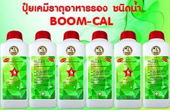 boomcal02
