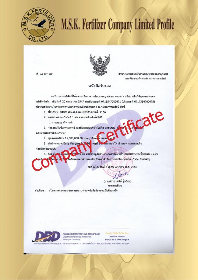 Company Profile AI 28