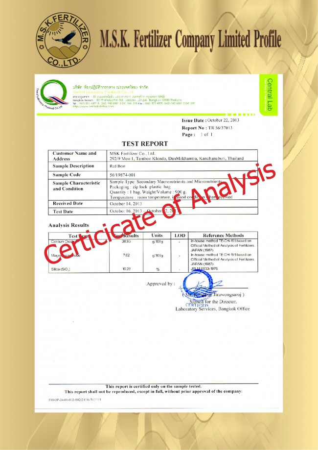 Company Profile AI 42